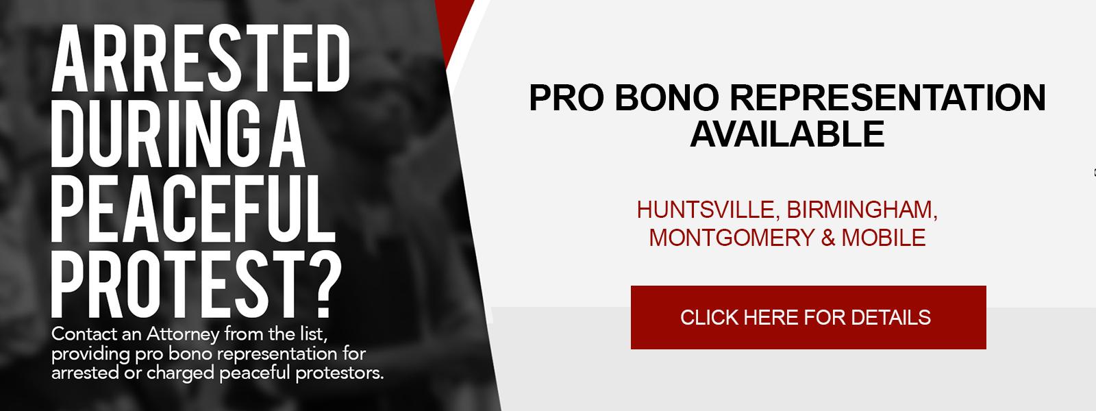 Pro Bono Representation